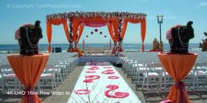 Indian Wedding NJ